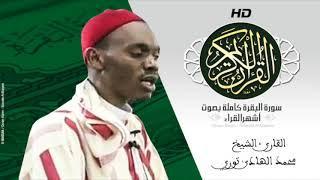 الشيخ محمد الهادي